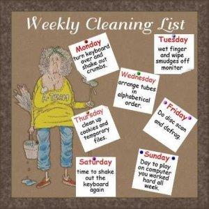 weeklycleaning